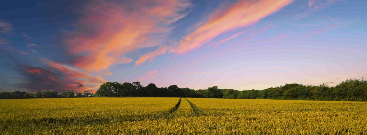 rural image