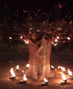 Wakehurst Glow Wild Tree