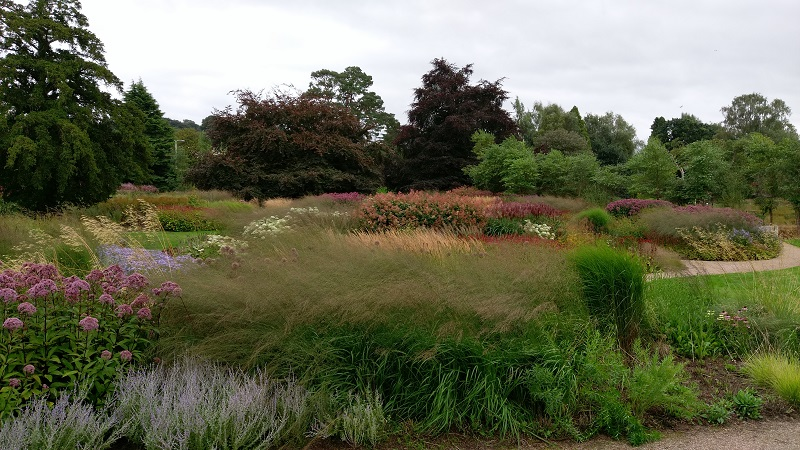 Rivers of Grass at Trentham Gardens