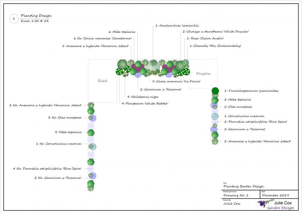 Garden Border Planting Plan