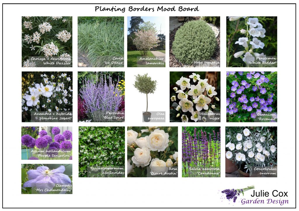 Planting Mood Board